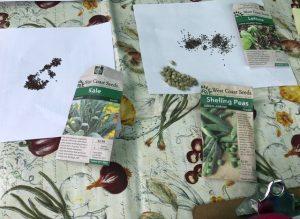 Planning your Garden for Abundance