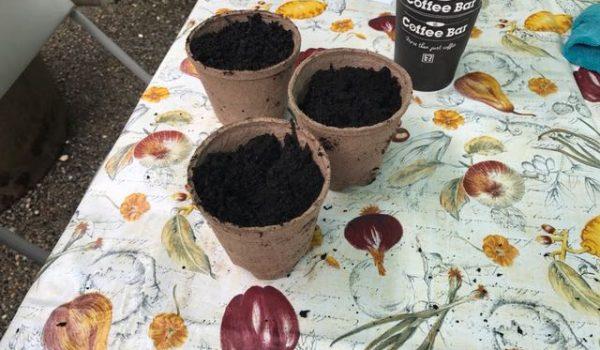 Soil Analysis Workshop